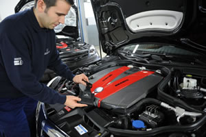Engine Performance Specialists